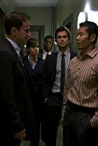 Image of White Collar: All In