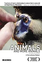 Image of Animals and More Animals
