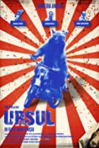 Image of Ursul