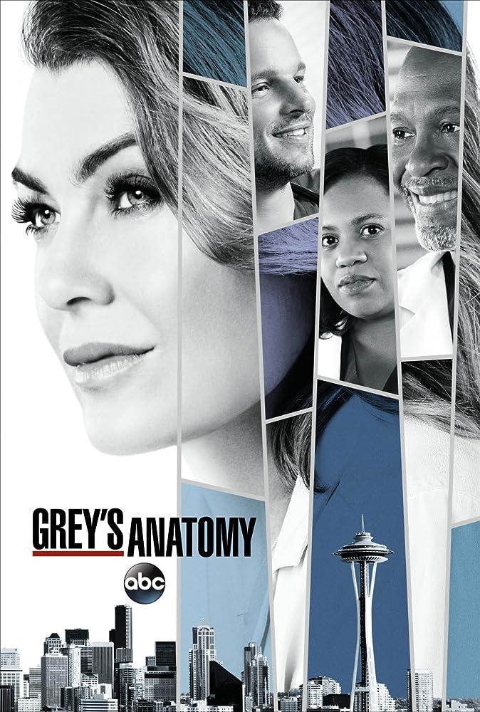 Greys Anatomy 14ª Temporada
