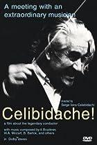 Celibidache (1992) Poster