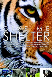 Give Me Shelter Poster