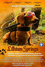 Lithium Springs Poster
