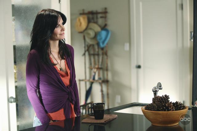Courteney Cox in Cougar Town (2009)