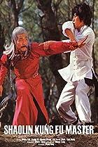 Image of Shaolin Kung Fu Master