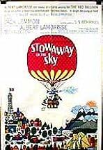 Stowaway in the Sky