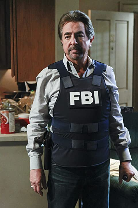 Joe Mantegna in Criminal Minds (2005)