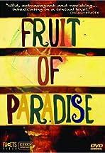 Ovoce stromu rajských jíme