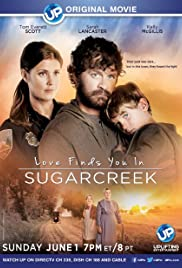 Love Finds You in Sugarcreek Poster