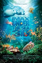 Image of Under the Sea 3D