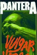Pantera - Vulgar Video