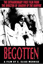 Image of Begotten