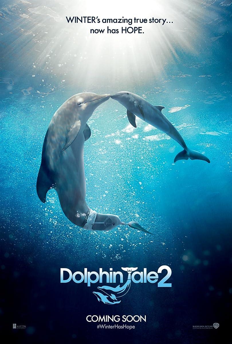 Mano draugas delfinas 2