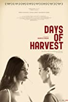 Image of Days of Harvest