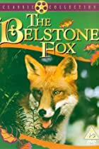 Image of The Belstone Fox