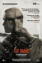Image of Cut Snake