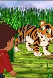 Bengal Tiger Makes a Wish Poster