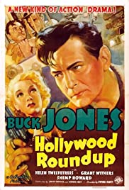 Hollywood Round-Up Poster
