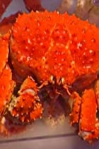 Image of Iron Chef America: The Series: Flay vs. Freitag: Alaskan King Crab