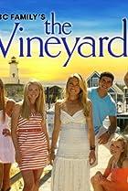 Image of The Vineyard