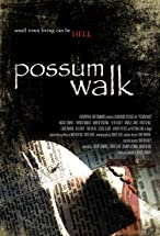 Primary image for Possum Walk
