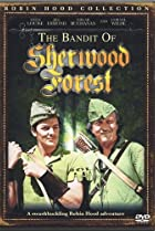 Image of The Bandit of Sherwood Forest
