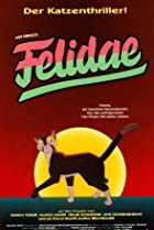 Image of Felidae
