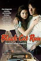 Image of Black Cat Run