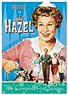 """""""Hazel"""""""