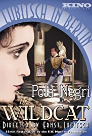 The Wildcat (1921) Poster - Movie Forum, Cast, Reviews