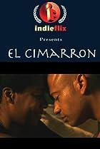 Image of El cimarrón