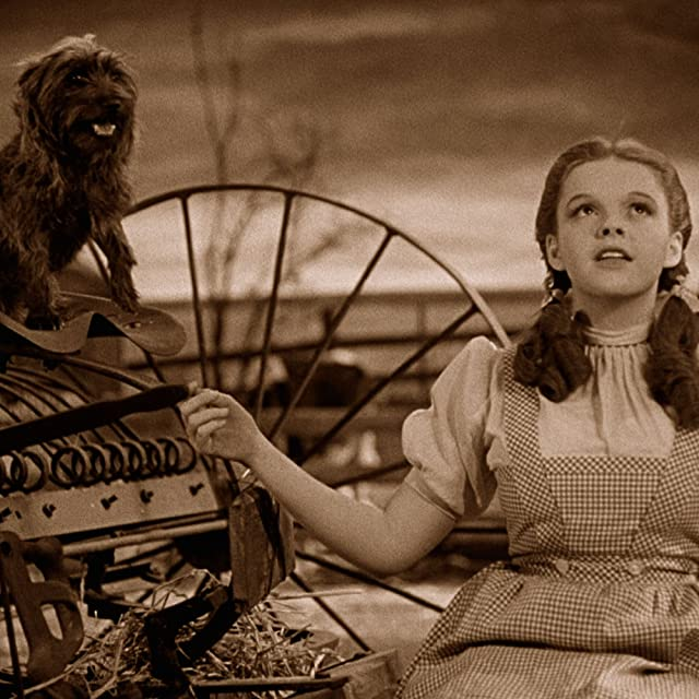 Judy Garland and Terry in The Wizard of Oz (1939)