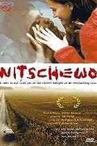 Image of Nitschewo