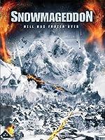 Snowmageddon(2011)