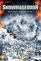 Image of Snowmageddon