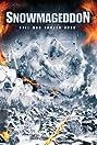 Snowmageddon (2011) Poster