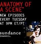 Image of Anatomy of a Scene