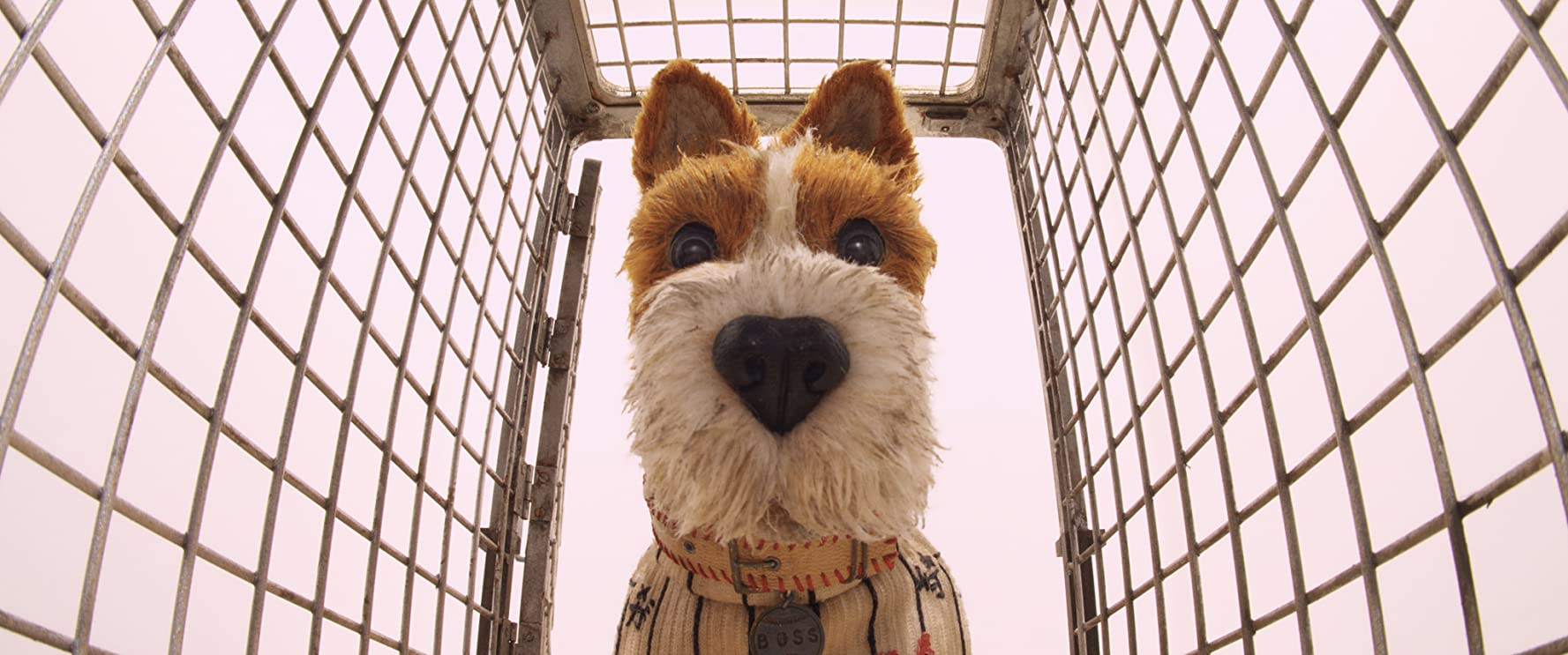 Bill Murray in Isle of Dogs (2018)
