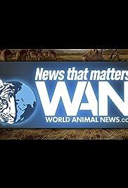 World Animal News Poster