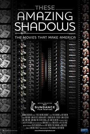 These Amazing Shadows Poster