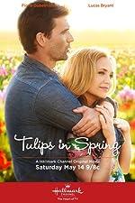 Tulips in Spring(2016)