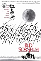Image of Red Sorghum