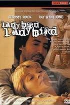 Image of Ladybird Ladybird