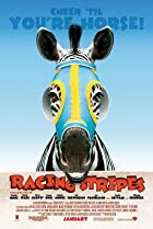 Image of Racing Stripes