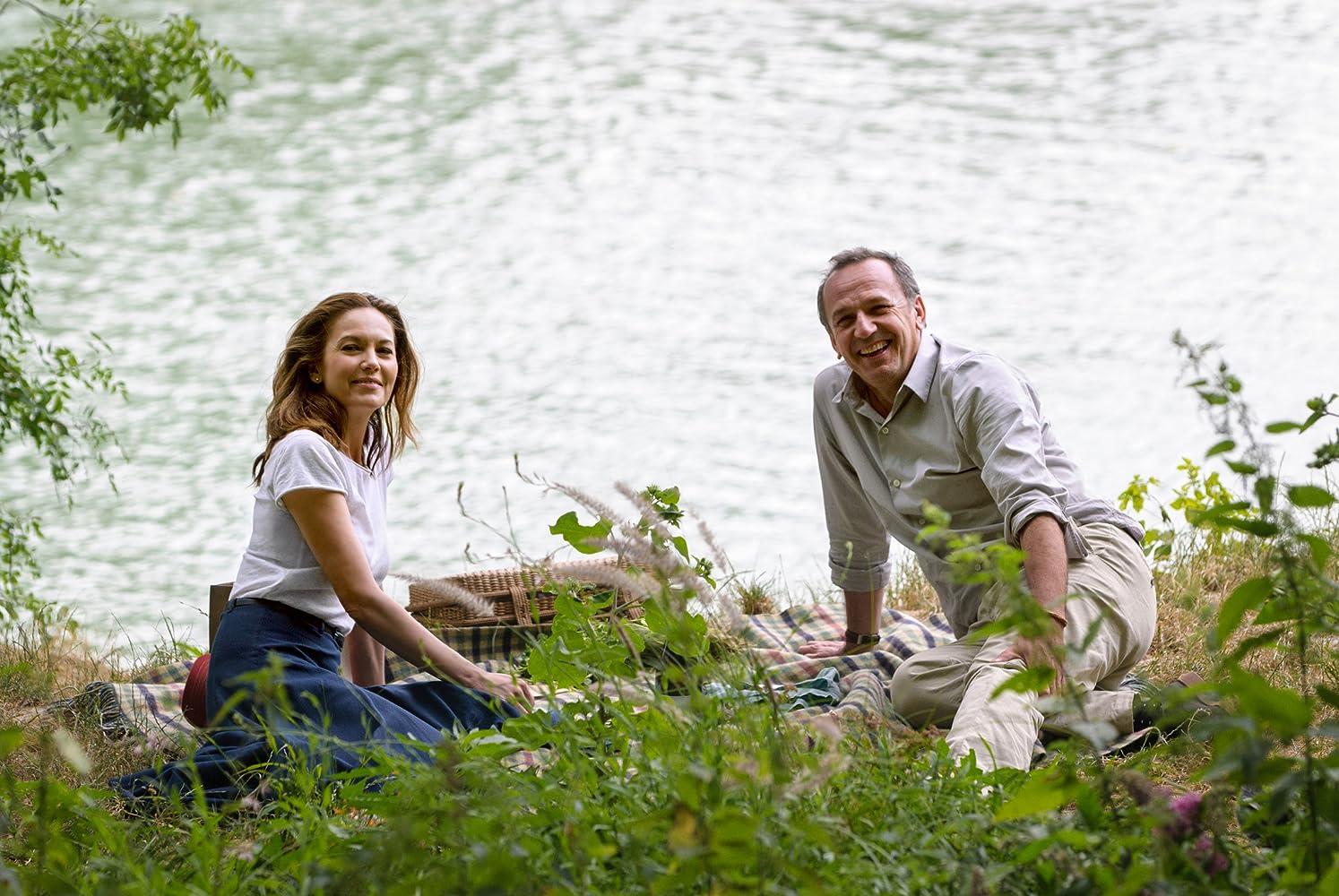 Paris Can Wait – Bonjour Anne (2016), filme online subtitrat în Română