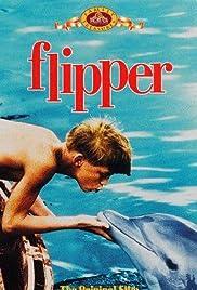 flipper film