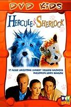 Image of Hercule & Sherlock