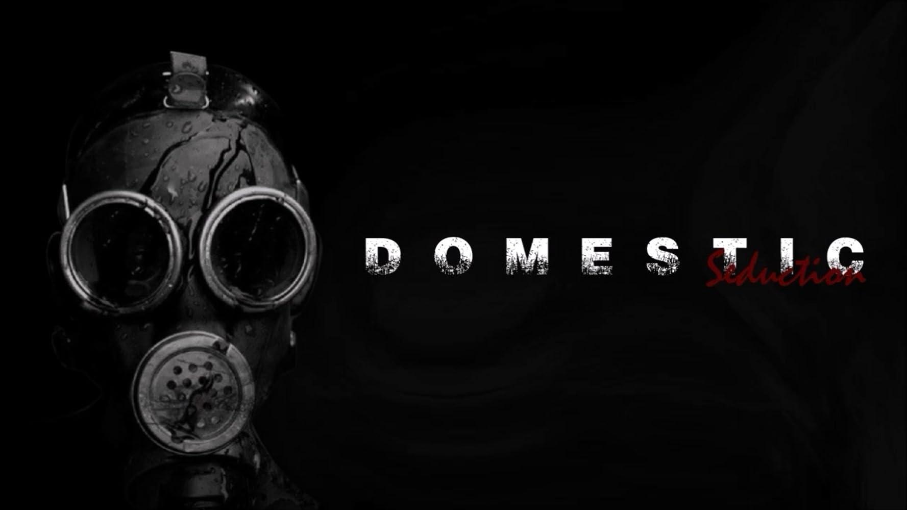Domestic Seduction 2017 Full Movie HD