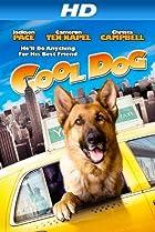 Image of Cool Dog
