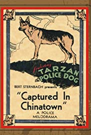 Captured in Chinatown Poster